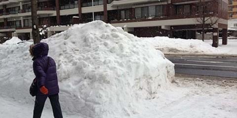 neige-japon