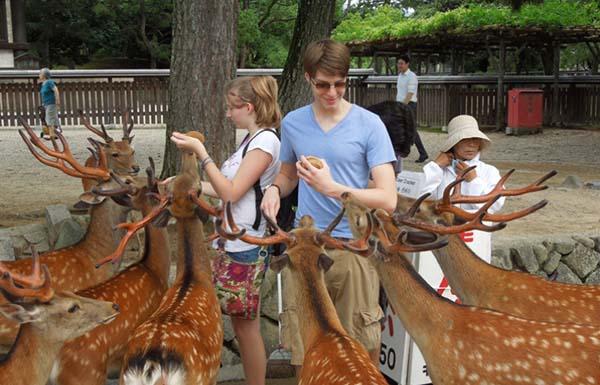 record-touristes-japon