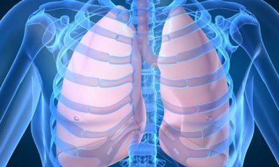 greffe-poumons
