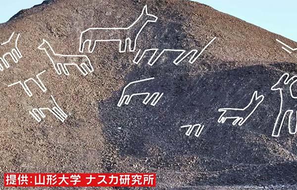 lama-nazca-japonais