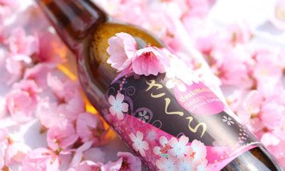 bière-cerisier-japon-sakura