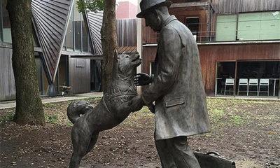 statue-hachiko-maitre-université-tokyo_mini