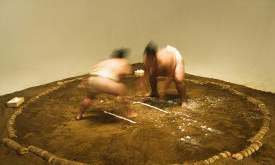 etrangers-sumo-champions