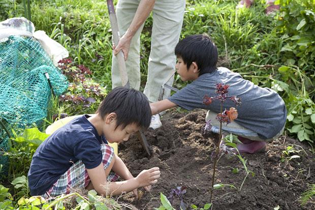 enfants-campagne-japon