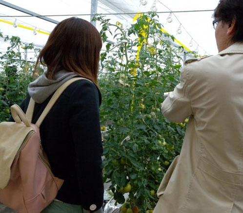 rencontre-couple-campagne-japonaise