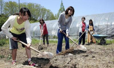 japonaises-agriculture-universite