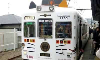 tama-densha-japon-train-chat