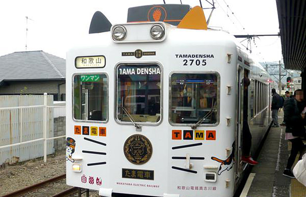 tama-densha-japon-train-chat
