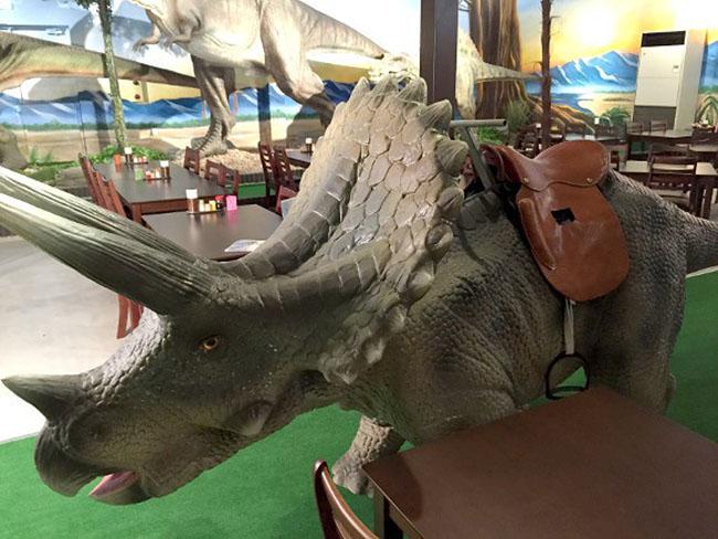 dinosaure-selle
