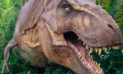 restaurant-japon-dinosaures