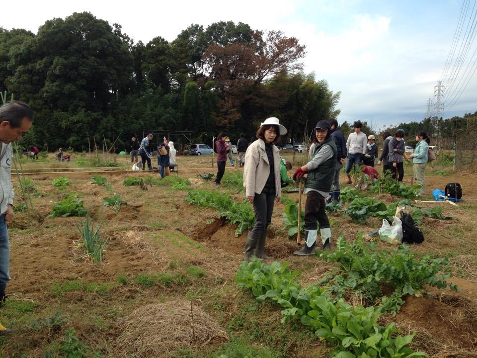 ferme-sans-emploi-japon