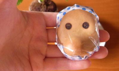 specialites-regionales-japon-souvenirs