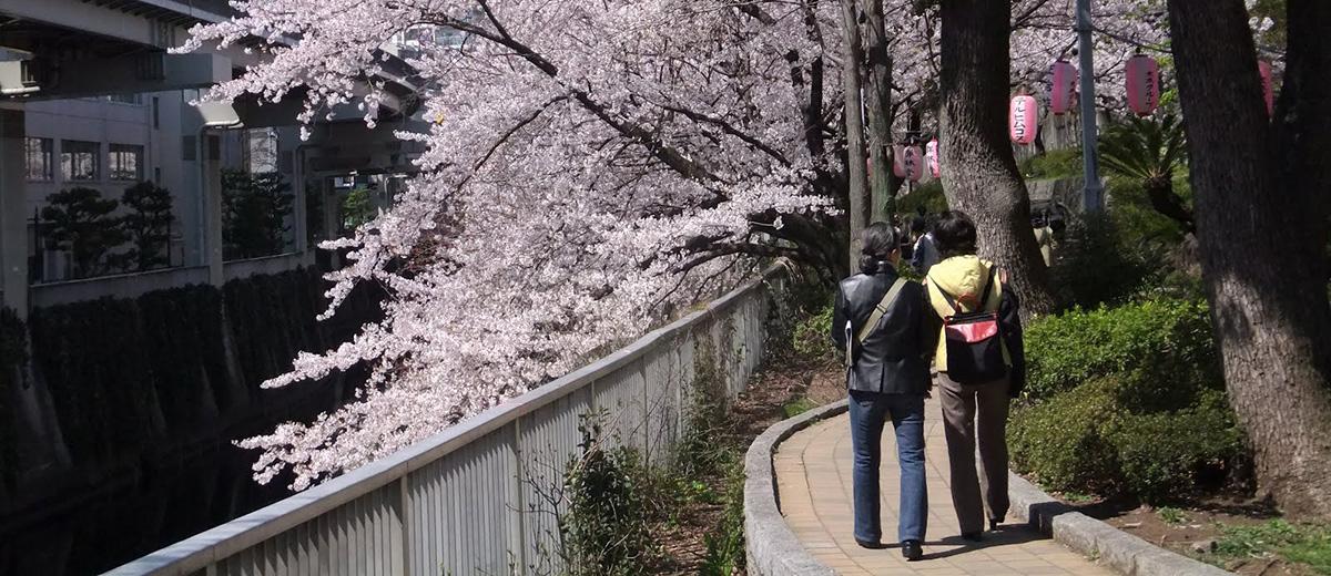ville-sensuelle-classement-japon