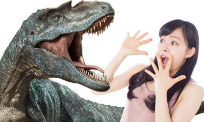 dinosaures-japon-katsuyama-fukui-dino-a-live