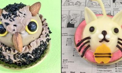 gateaux-hiboux-chats-Japon-tokyo