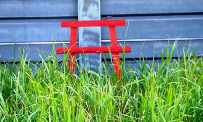 torii-shinto-ordures-urine-japon2