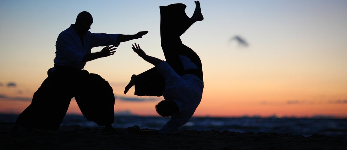 arts-martiaux-japonais