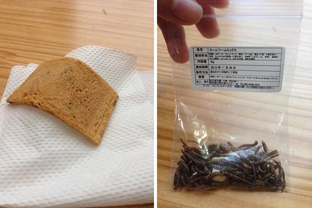 craquelins-riz-insectes