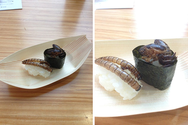 sushi-insectes-japon-tokyo