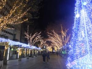 Allée de Noel Shizuoka