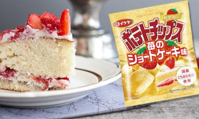 chips-gateau-fraise-japon-insolite1