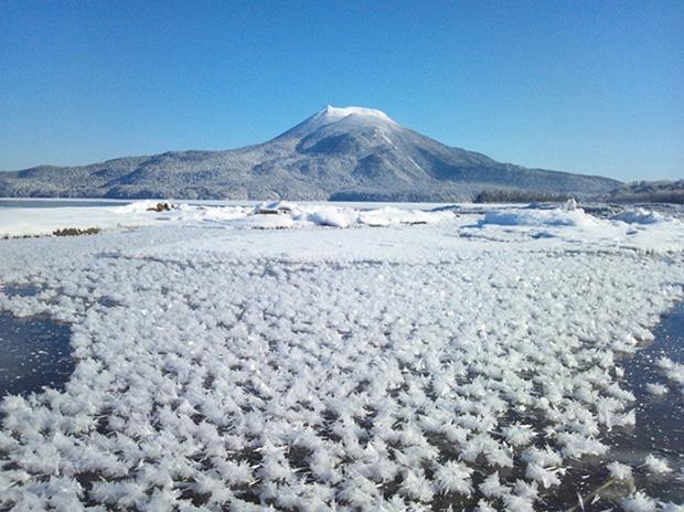 fleur-de-glace-hokkaido-japon