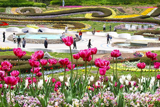 parc-michinoku-Japon