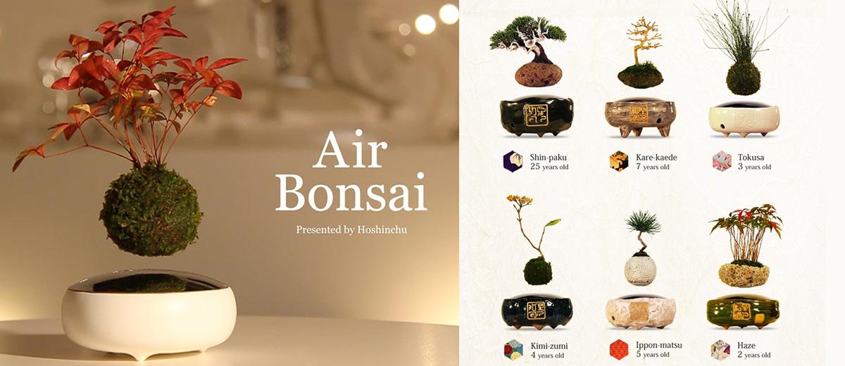 air-bonsai-kickstarter-bonsai-volant-levitation-Japon