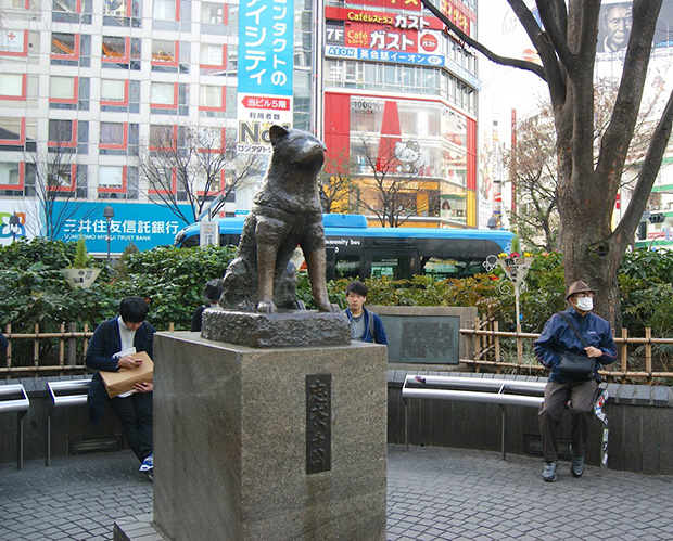 hachiko-shibuya-tokyo