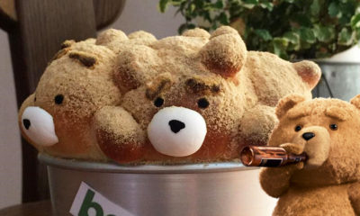 ted-ours-gateau-pain-japon-patisserie