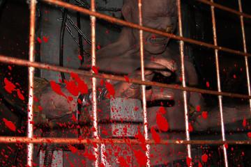 visite-lockup-izakaya-prison-tokyo-japon