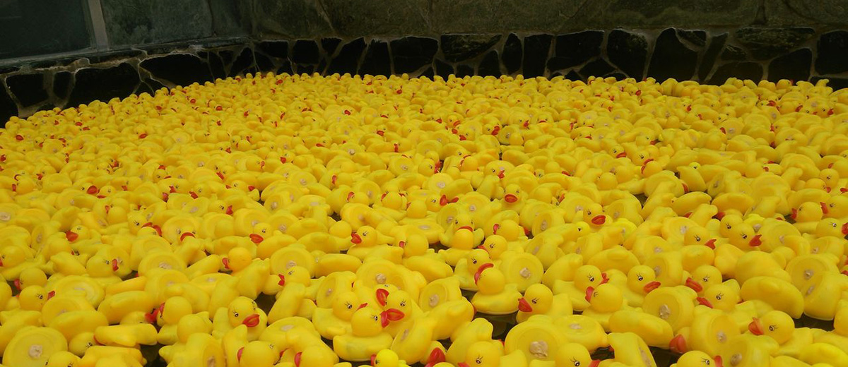 bain-sento-japon-canard-plastique-insolite