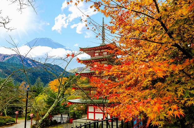 chiraito-sanctuaire-shintoiste