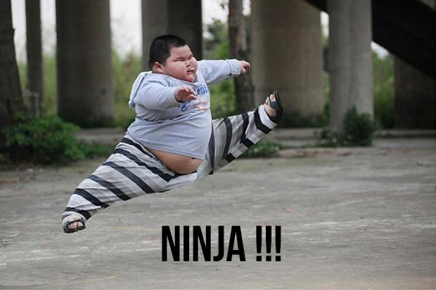 emploi-ninja-travail-japon-aichi