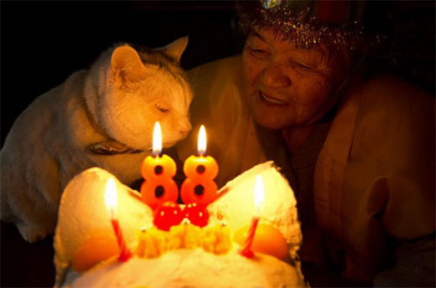 fukumaru-anniversaire-88