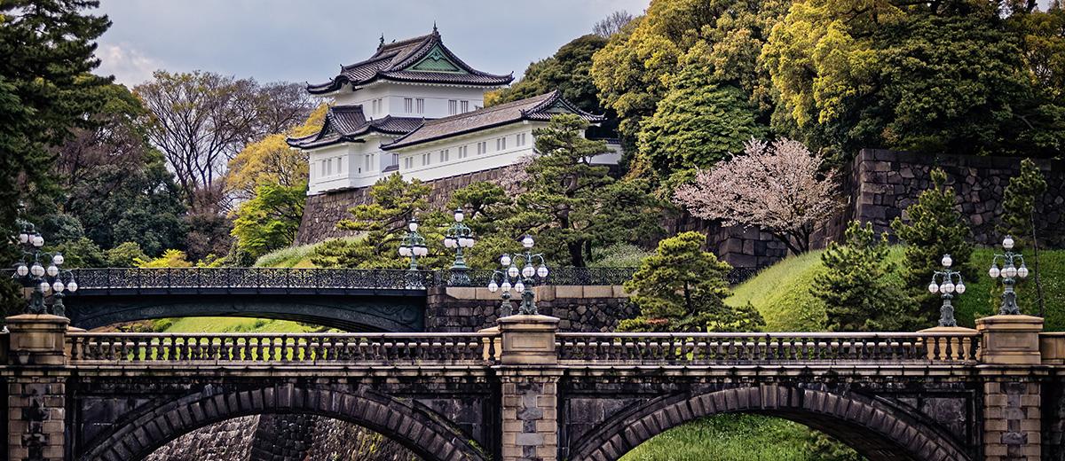 palais-imperial-tokyo-cerisiers-Japon