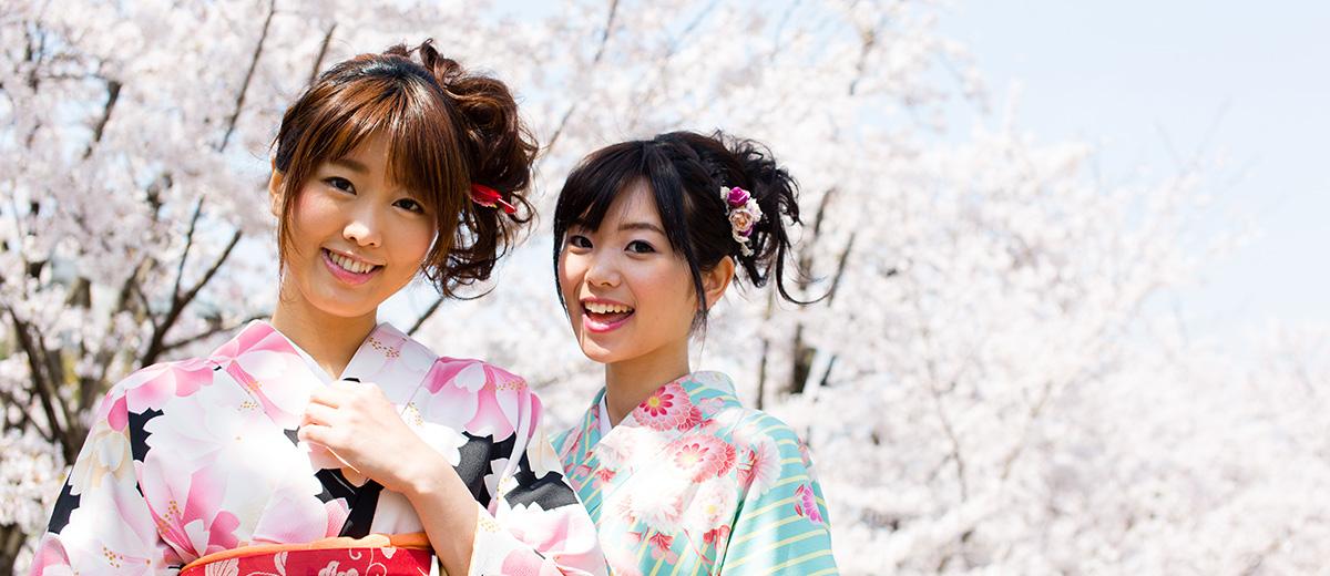 hanami-sakura-cerisiers-fleurs-Japon-Tokyo