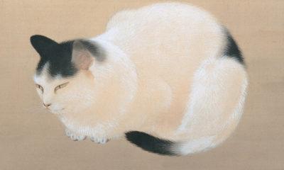 peintures-chats-Japon-shunso-hishida-meiji