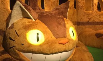 chatbus-japon-totoro-ghibli-musee-miyazaki