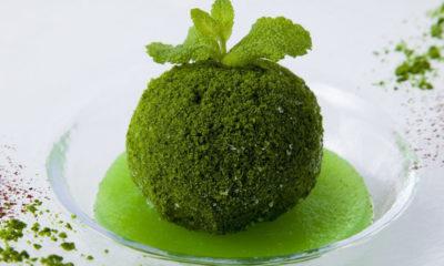 kokedama-ice-dessert-japonais-hotel-gastronomie-matcha