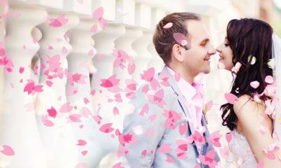mariage-fleurs-cerisier-sakura