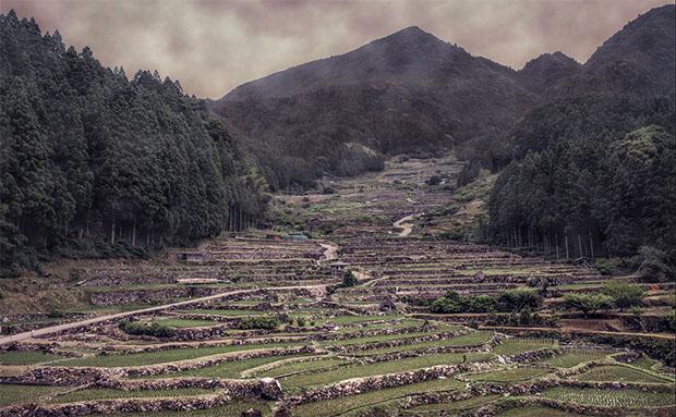 saison-pluie-japon