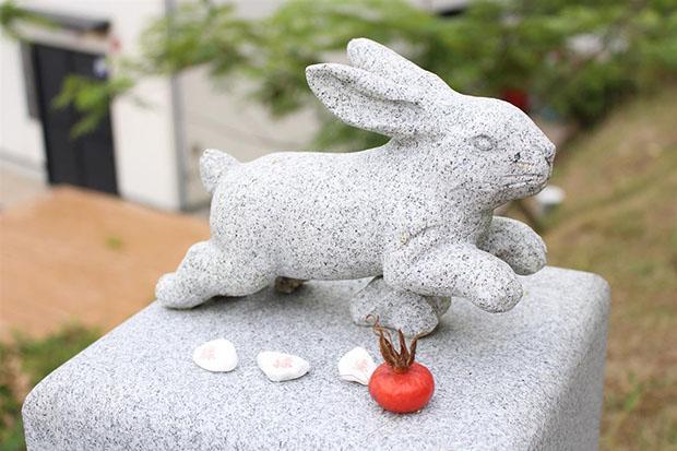 to-jinja-tottori-japon-amulettes-lapin (3)