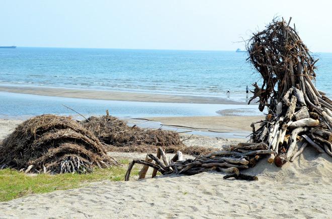 ordures-nausicaa-de-la-vallee-du-vent-miyazaki-ghibli-plage-monstres-beach (1)