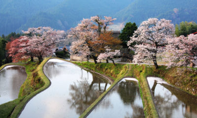 visiter-misugi-japon-prefecture-mie-inaka-tourism-hinotani-onsen